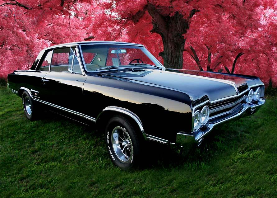 Car Garage For Sale >> Website Designed at Homestead™ Create a Website and List ...